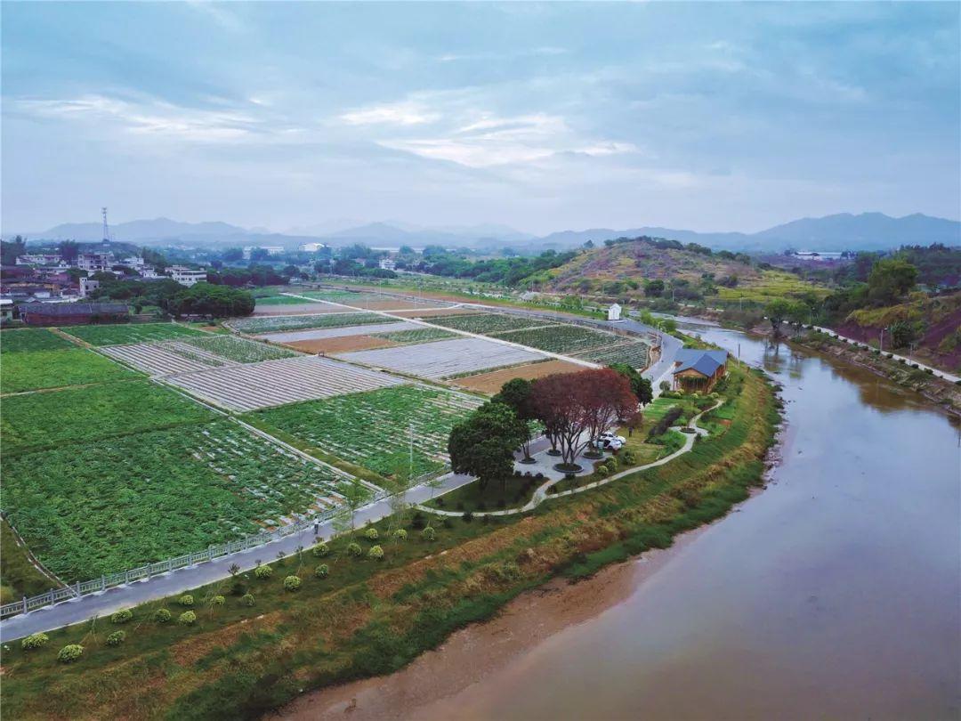兴宁市:乡村休闲景观星罗棋布,拉开壮丽画卷!图片