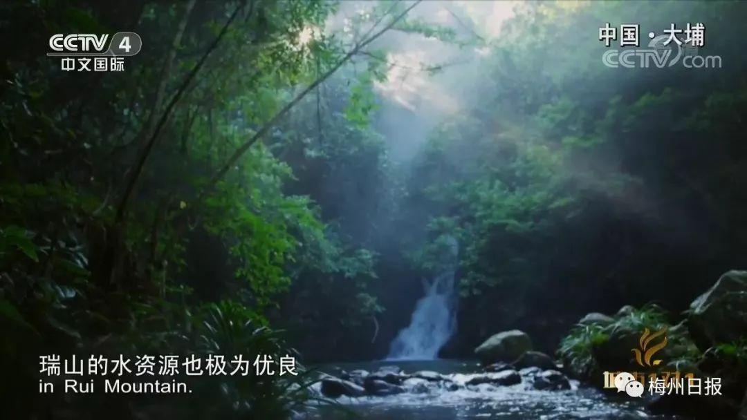 大埔县瑞山风景区