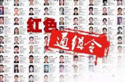 """""""百名红通人员""""王林娟回国投案 2011年逃往加拿大"""