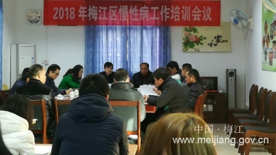 梅江区举行2018年慢性病工作培训会议