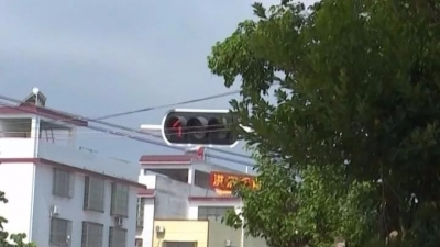 """莫让路树""""遮蔽""""了司机的眼!兴宁市民盼修剪…"""