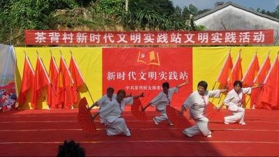 留隍镇茶背村开展新时代文明实践活动,村民:好看又受用