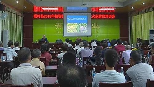 蕉岭县举办红火蚁防控培训会 提高红火蚁防治效果