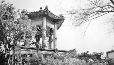宋代大诗人杨万里与梅州丨门生刘涣治梅的四大创举