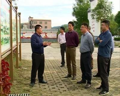 省生态环境厅专家到大埔开展国家重点生态功能区县域现场核查工作