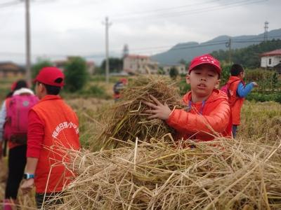 回归大自然!梅州日报小记者走近蕉岭体验秋收