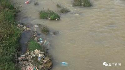 民生沟通丨潲水和厨余垃圾 能不能入公共下水道呢?