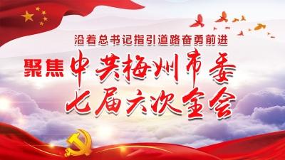 直播回顾丨梅州市委七届六次全会