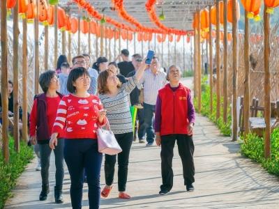 """回眸2018丨去年接待游客4600万人次,梅州""""宜游城市""""招牌进一步打响"""