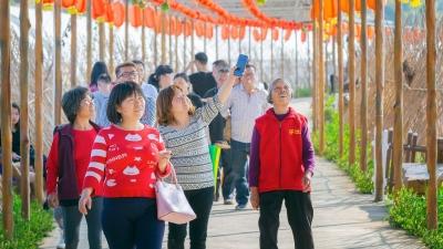 满分!春节假期梅州乡村旅游好评如潮,你去体验了吗?