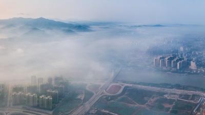 美出新高度!当平流雾遇上梅城,便成了人间仙境
