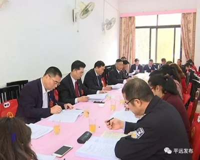 平远县人大代表分组审议人大、法检两院工作报告