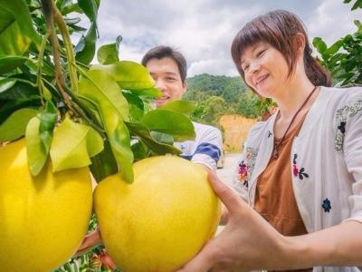 """全国50个""""邮政农品""""揭晓!省内唯二入榜是梅州这个""""特产"""""""
