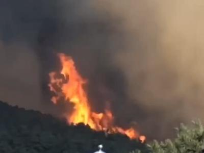 河北青龙突发山火 消防人员奔赴现场进行灭火处置