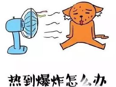 热爆,昨日梅州最高温34℃!别慌,你要的冷空气就来了...