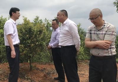 人行兴宁支行与兴宁农商银行共同开展企业走访调研工作