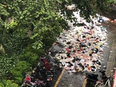 """嘉应学院垃圾清理不及时,散发恶臭还""""侵占""""人行道"""