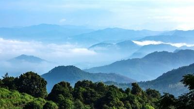 每日一景丨西岩山茶田观云雾,如梦似幻若仙境