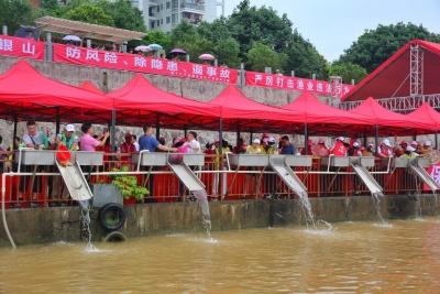340万尾鱼苗今日投放梅江河,为历年最多