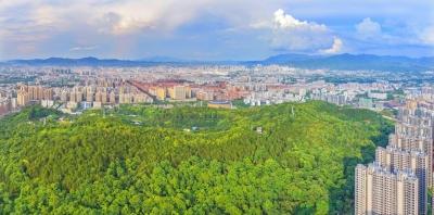 每日一景丨登高梅花山,新城收眼底