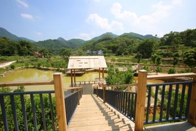 """谋划大项目 建设示范村!来看丰顺三山村的新农村""""变形记"""""""