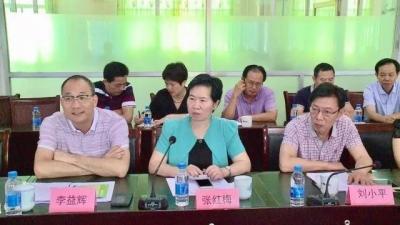 大埔县人大常委会组织视察加快创建卫生强县工作的实施和落实