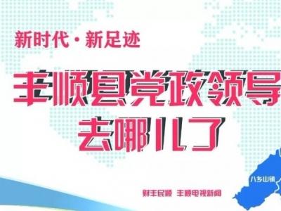 大家一起来看看!丰顺县党政领导上个月都在忙什么?