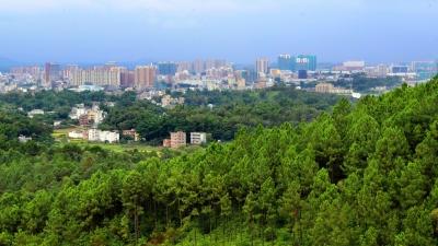 每日一景丨森林围城,绿满五华