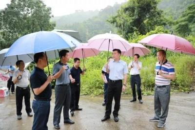 熊锋松到大埔县城调研市政设施建设工作