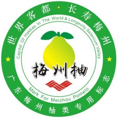 """""""梅字号""""农产品有了统一""""代言""""!梅州柚、嘉应茶、客都米logo出炉"""