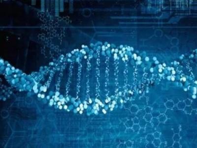 梅江区首家企业科学技术协会成立