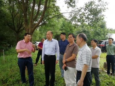 省广新控股集团有限公司党委委员陈南生率队来梅考察