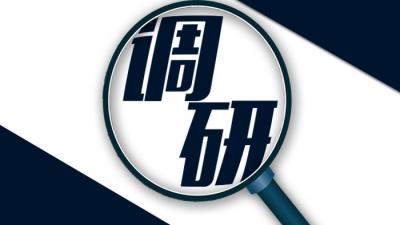 朱国城率队到新联村调研乡村旅游工作