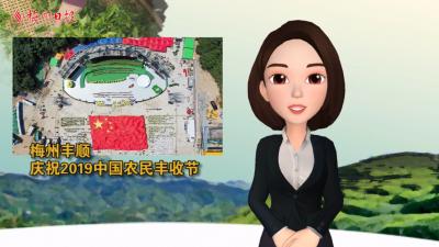 梅州V视丨今天,我们在梅州丰顺庆祝2019中国农民丰收节!虚拟主播第三弹~