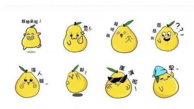 萌化你的梅州柚专属表情包来啦~动起你的手指,赶快下载!