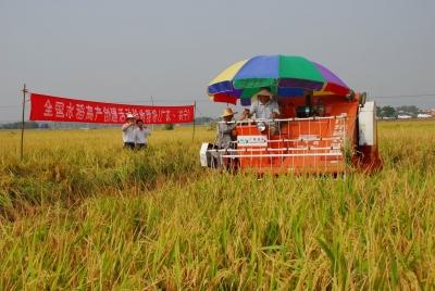 """兴宁强农惠农开创""""三农""""工作新局,让农民钱袋子鼓起来~"""