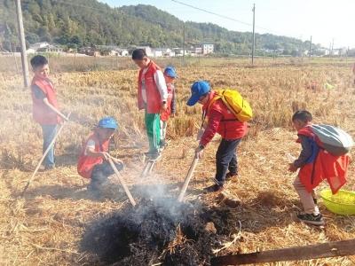 秋日风光无限好,梅州日报小记者来到蕉岭,烤番薯、运动会整起!