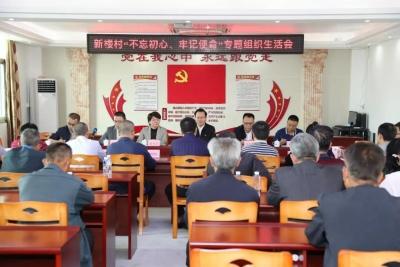 曾永祥到汤南镇新楼村指导主题教育专题组织生活会