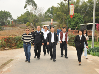 朱国城调研城区道路和美丽乡村建设工作:求细务实解决好民生实事