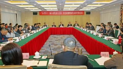 梅州代表团审议省政府工作报告 林贻影陈敏张爱军等参加讨论
