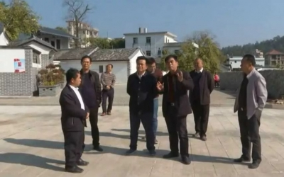 朱汉东到百侯镇、枫朗镇调研乡村振兴工作:让群众在参与中有获得感、幸福感