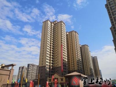 聚焦政府工作报告丨利用航空限高放宽的机遇,启动江南新城二期开发
