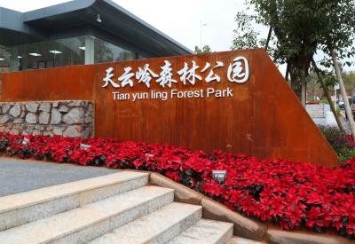一定要打卡!五华天云岭森林公园入园广场建成,春节前开放~