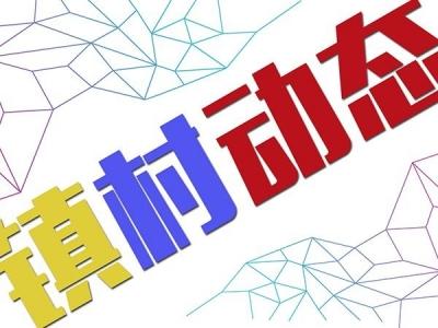 """梅县区顺里村支部书记罗林芳:尽己所能当好乡村振兴""""带头人"""""""