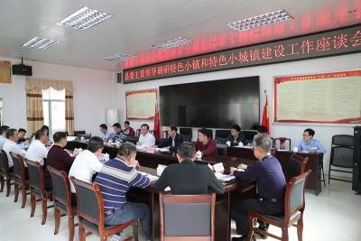 丰顺召开留隍镇国家特色小镇和特色小城镇建设工作座谈会