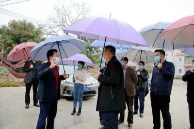 朱汉东带队到枫朗镇调研乡村振兴工作