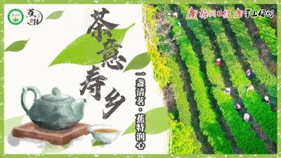 """直播回顾丨久见!朋友们,来寿乡喝一杯""""蕉特茶"""""""