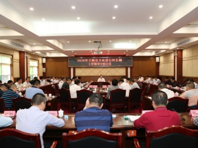 丰顺召开2020年全面推行河长制工作领导小组会议