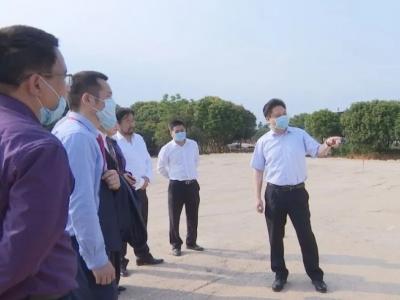 香港铜锣湾集团考察团来蕉参观考察:加强战略合作 携手共赢发展