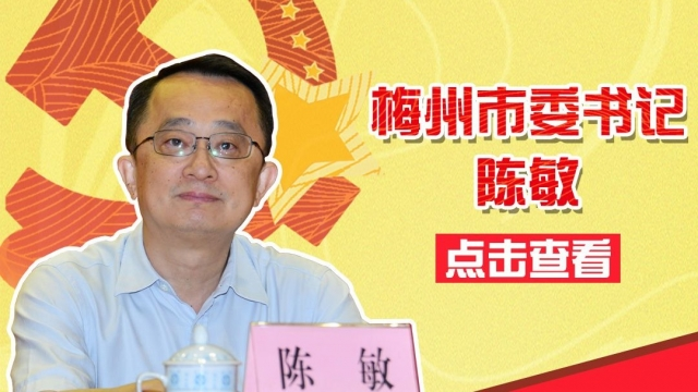 梅州市委书记陈敏活动报道集